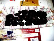 Le diamant noir au marché  de Sarlat  (Ph Paysud)