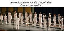 La Jeune Académie Vocale d'Aquitaine en forme