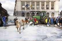 Grève européenne du lait: les raisons de la colère
