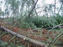 Les tempêtes répétées:conséquence du changement climatique? (ph Paysud)