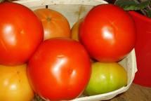 """Ouverture du marché des légumes au Maroc:""""une provocation"""" estime la Cr47"""