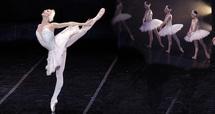 Opéra de  Bordeaux: quand deux étoiles invitées brillent dans les reflets Du Lac