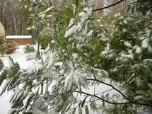 Janvier pas chaud: la neige gagne du terrain