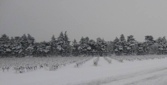 Toujours de la neige de la Provence au Quercy