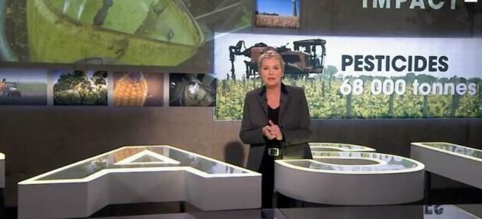 Elise Lucet ouvre le dossier... à charge (capture d'écran)