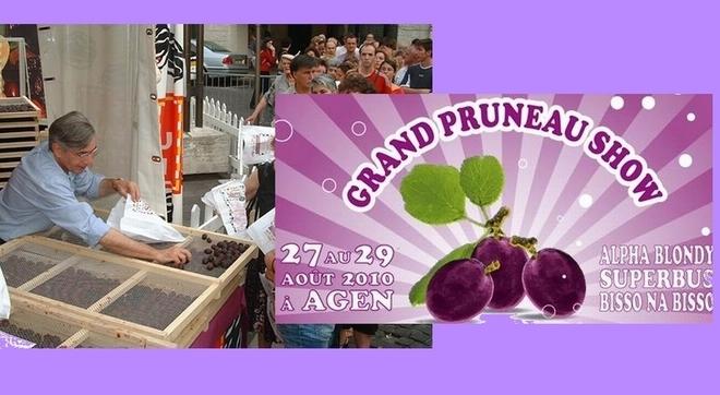 Pruneau d'Agen: Grand show et grosse récolte