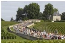 Le marathon du Médoc en direct sur  France 3 Aquitaine