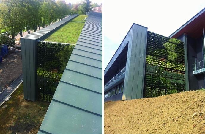 Photos Gauche's Muru. Inédit: un toit et des murs végétalisés