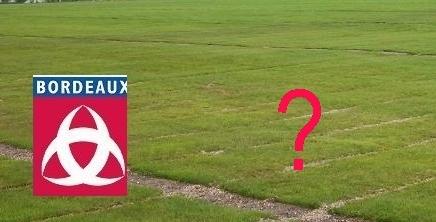 Grand Stade de Bordeaux: la procédure en marche
