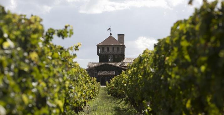 Une vue du château Smith Haut Lafitte et lien sur  le site internet (DR)