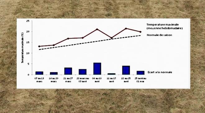 La sécheresse de printemps booste la consommation de certains produits