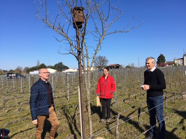 Visite d'un vignoble écologique au cours de la semaine bio de Gironde (ph Département de la Gironde)