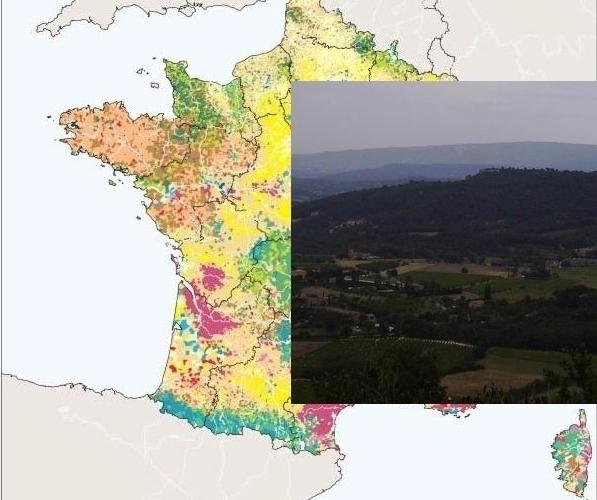 Les chiffres de l'agriculture: la France perd toujours ses paysans