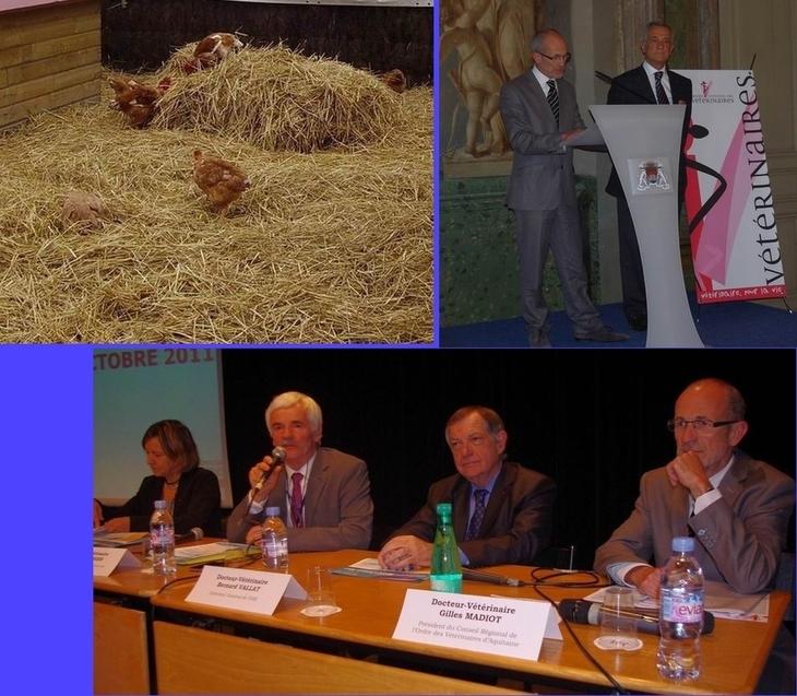 Poulets, réception à la mairie, conférence (montage Paysud)