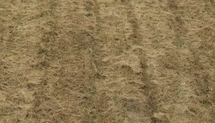 Les suites de la sécheresse:aides de l'Aquitaine et de trois départements