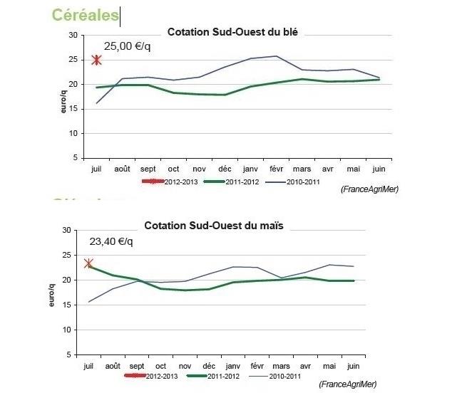 La récolte française de blé est en hausse et les céréaliers veulent produire plus