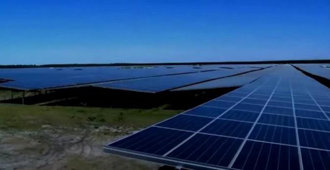 Capture d'écran vidéo groupe écologie NA