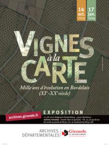 Vignes à la carte à Bordeaux