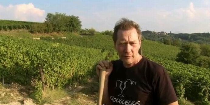 Le festival Oenovidéo récompense la résistance vigneronne