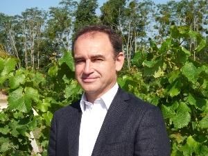 Dominique Guignard entend renforcer l'appellation Graves