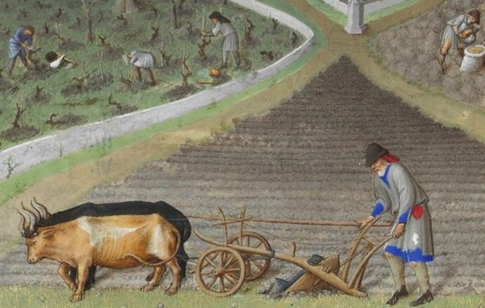 En marge des Terres de Jim:le lent sillon de la charrue à travers les âges
