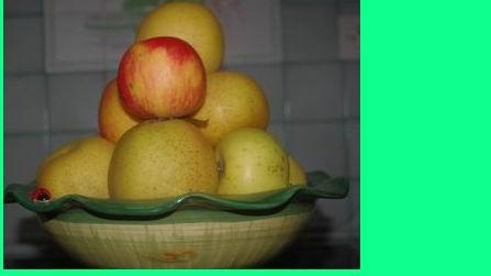 Les pommes:plaisirs d'automne (ph Paysud)