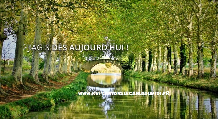 Le lien pour le site replantonslecanaldumidi.fr
