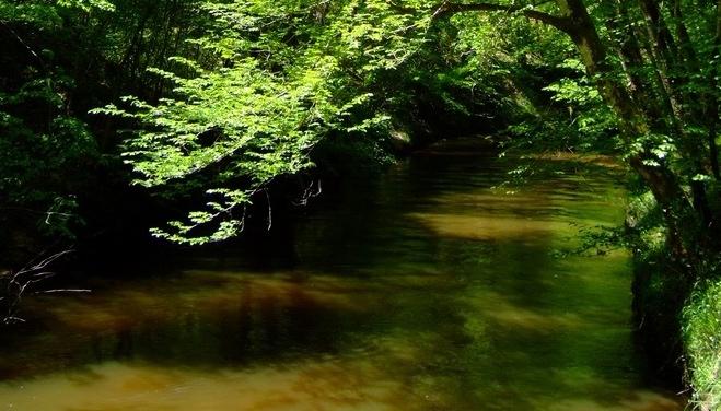 Le Ciron. Un écosystème menacé? (DR)