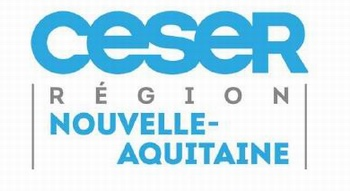 Le CESER  Nouvelle-Aquitaine pas insensible à la crise des gilets jaunes