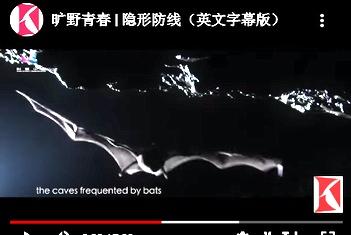 Capture d'écran d'une vidéo de la Chine sur Youtube
