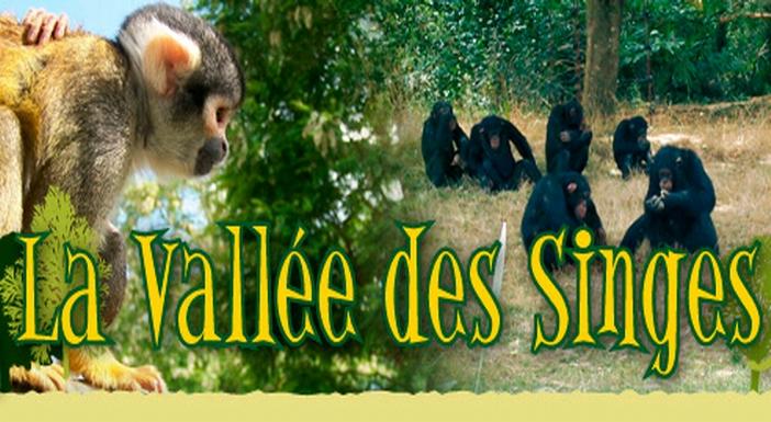 Ph site Vallée des Singes