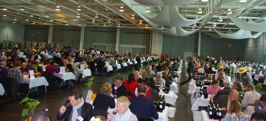 Concours des vins de Bordeaux-Aquitaine:mille médailles et un détour par le labyrinthe