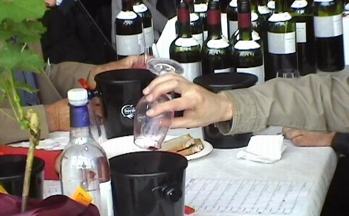 Au concours des vins de Bordeaux (Ph Paysud)