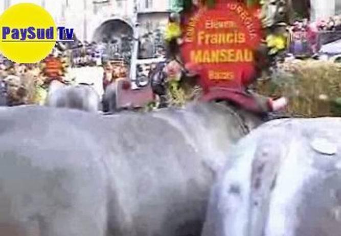 Une vidéo (2009) sur la fête du boeuf gras de Bazas