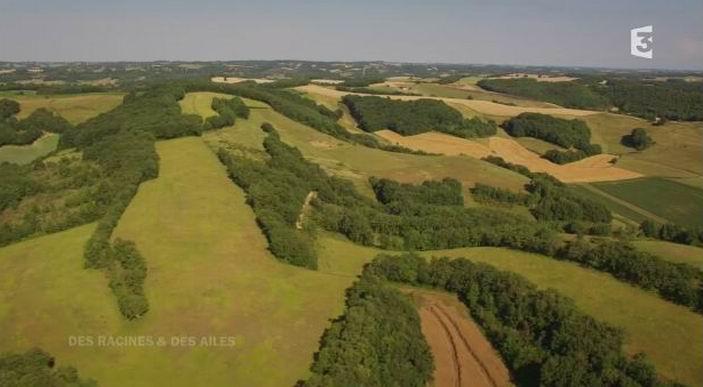 Le Gers vue d'en haut (capture d'écran du film de France3)