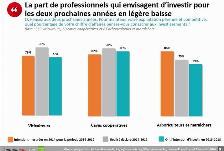 Le baromètre de Vinitech-Sifel:bonnes et moins bonnes intentions d'investissement