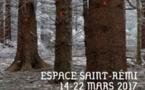 Quatorze artistes bordelais mobilisés pour Jardins et Santé