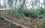 Tempête du 24 janvier: une lourde addition en Aquitaine