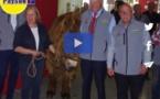 Salon de l' Agriculture de Nouvelle-Aquitaine:clin d'œil au baudet du Poitou