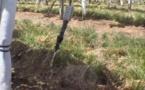 Agriculteurs irrigants  portugais, italiens et français se rapprochent
