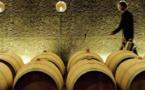 Vins de Bordeaux:le gel de 2017  ne refroidit pas la dynamique