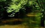 Une lettre ouverte des protecteurs de la nature du sud-ouest à Nicolas Hulot