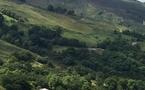 Comment bien terminer l'année en Terre et Côte Basque