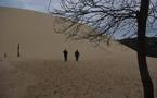 Les nouveaux horizons de la dune du Pilat