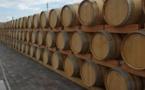Marché des vins de Bordeaux:FDSEA et JA veillent sur les cours