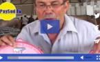 Salon de l'agriculture de Bordeaux:le jour de chance d'un éleveur landais