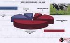Conférence girondine de l'élevage:les leçons de la sécheresse