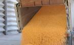 Maïsadour engrange les fruits du marché des céréales et de ses acquisitions