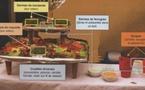 Veille sanitaire en Aquitaine: les leçons des infections à l'Escherichia coli de Bègles