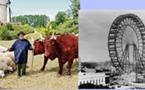 Parcs d'attraction: en Périgord le Bournat fête ses 20 ans